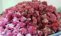 Dried-Pomegranate-Flowers.jpg